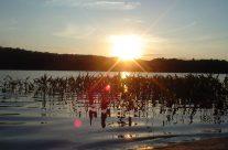 Muskoka Lakeside Resort Water Sunset